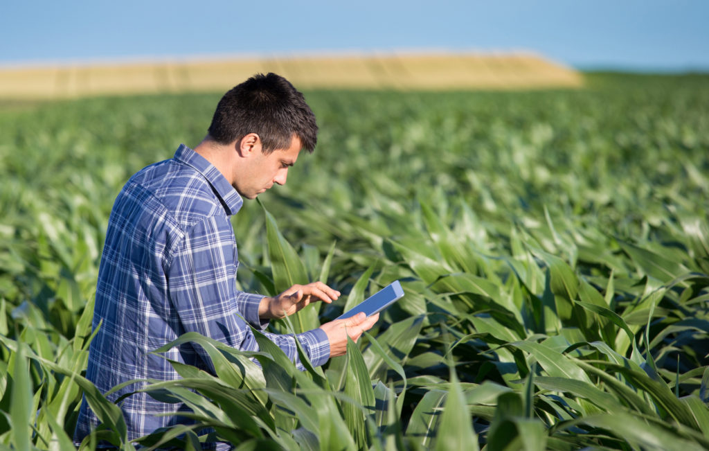 Agriculture RFID Security